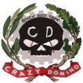 Crazy Domino